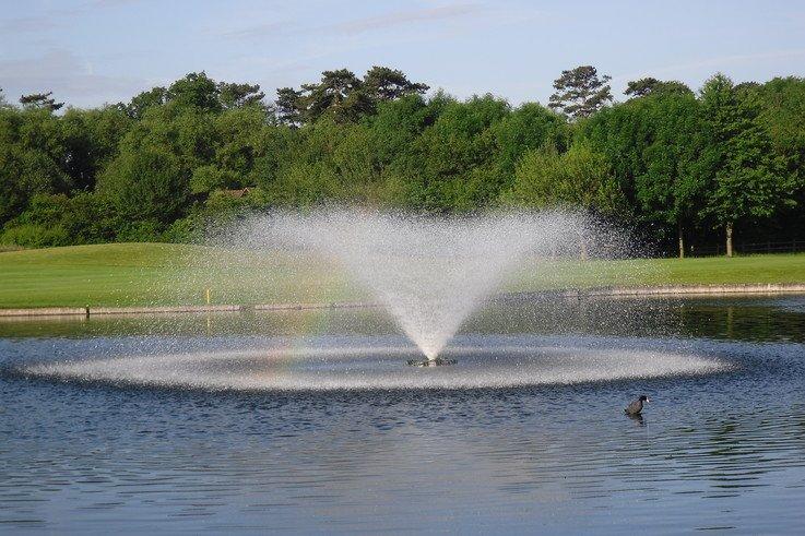 Otterbine at The Buckinghamshire
