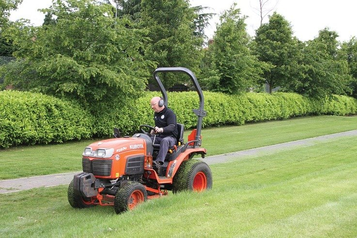 Hedges Mowing