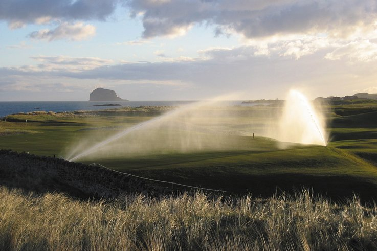 Automatic watering systems Do we need them?