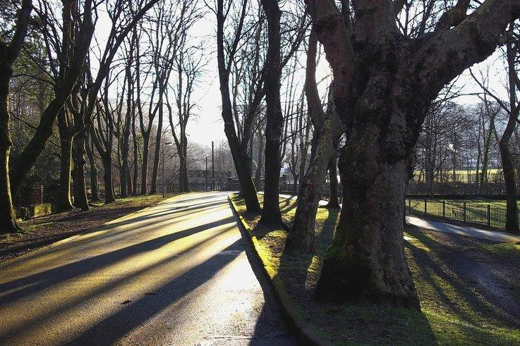 Gelligaled Park
