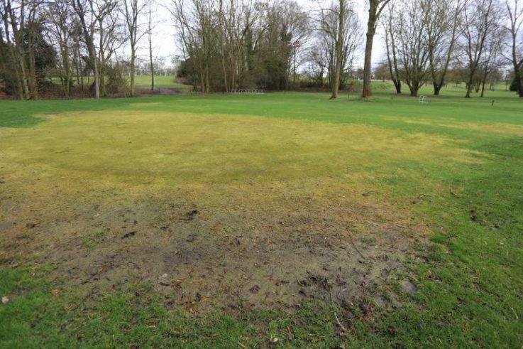 Cambridgeshire golf club 11th green