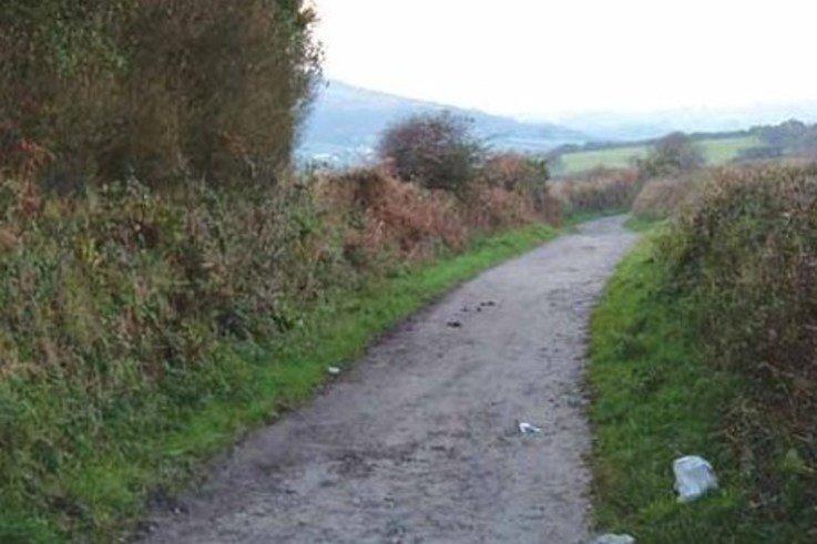 Footpath1.jpg [cropped]