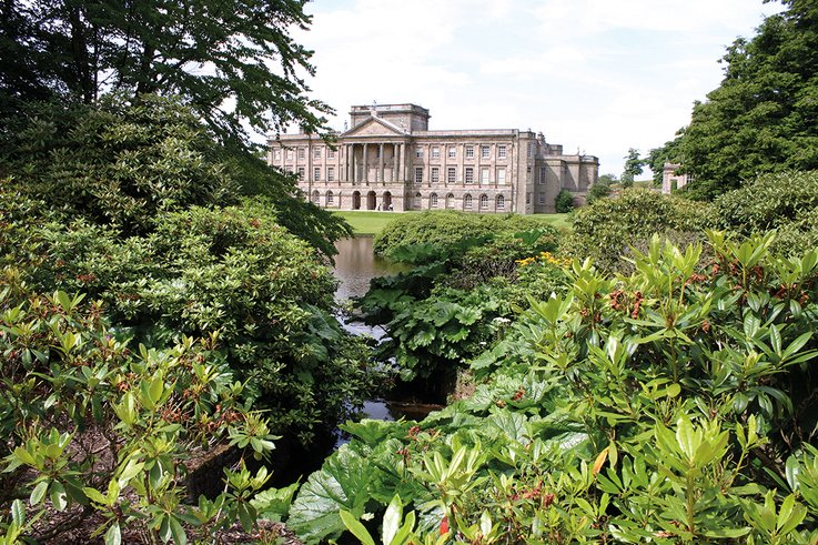 Lyme House&Rhododendrons