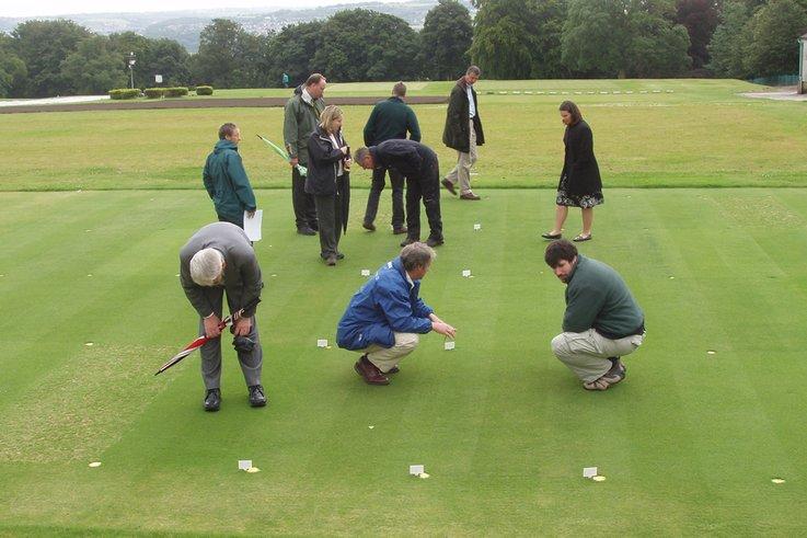 Golf Greens Trials under Expert Scrutiny