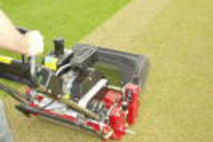 The 'Which style report' on Cricket mowers