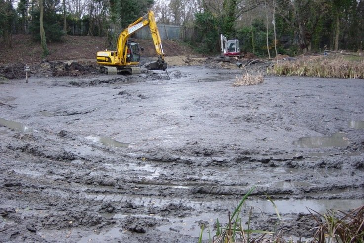 BEFORE  Speedcut at work on the old pond at Sundridge Park Golf Club, Kent, in November DSC00013   Copy