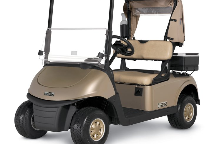 EZGO RXV GoldVehicle