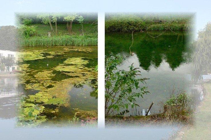 New Ultrasonic Technology Controls and Destroys Algae