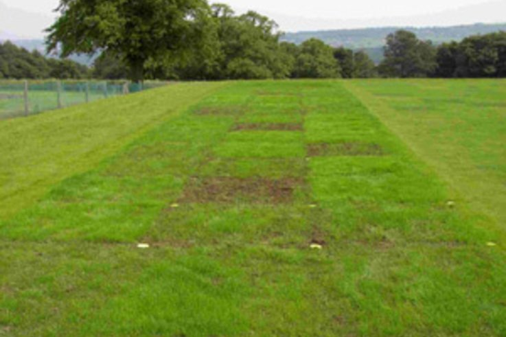 Exciting new range of drought tolerant mixtures go into trial