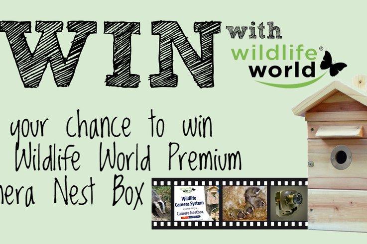 Wildlife World36   2