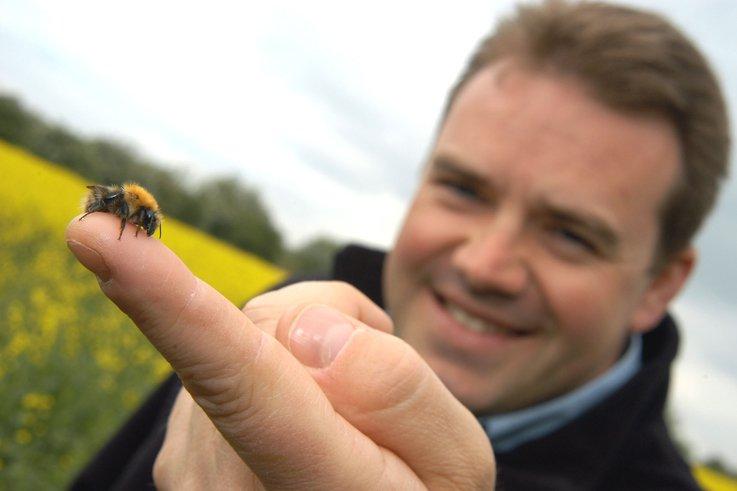 Simon Elsworth + bee.jpg