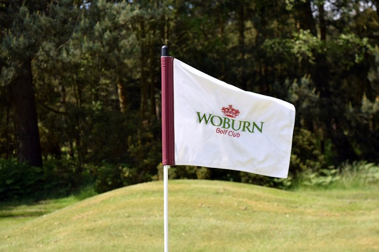 Woburn Pin and Flags   BMS