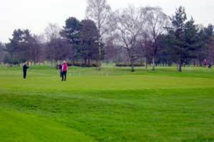 Spring clean for mature golf greens
