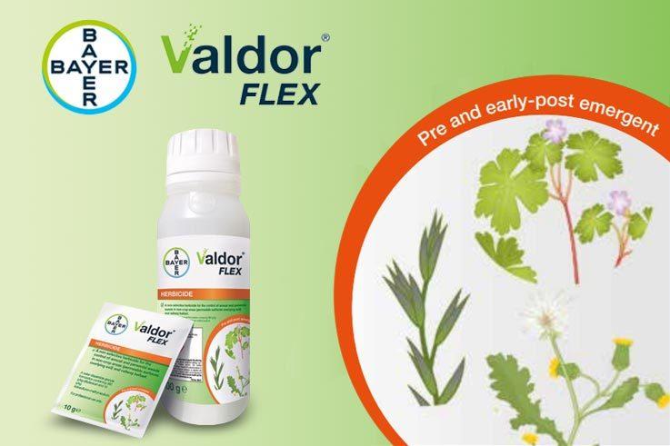 Valdor-Flex-#3