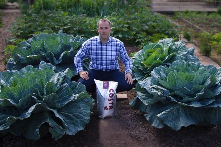 Kevin Fortey   Giant coffee cabbages 4