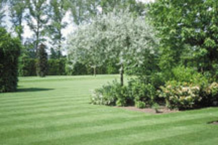 Scotts launches new longer lasting fertilizers for Landscaping