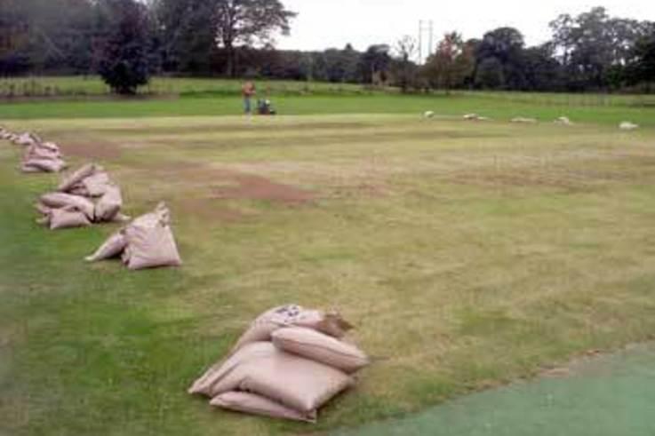 Autumn Renovation on Cricket Squares
