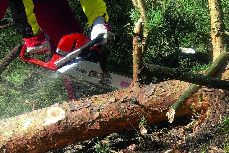 PR4111 656C chainsaw