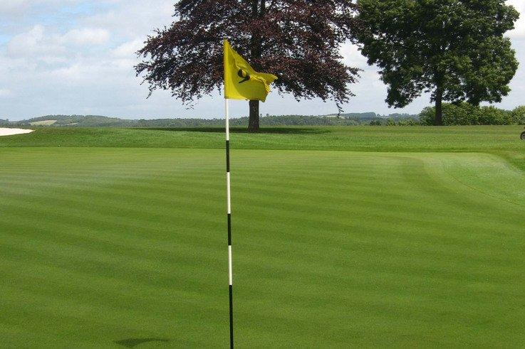 Golfgreen.jpg