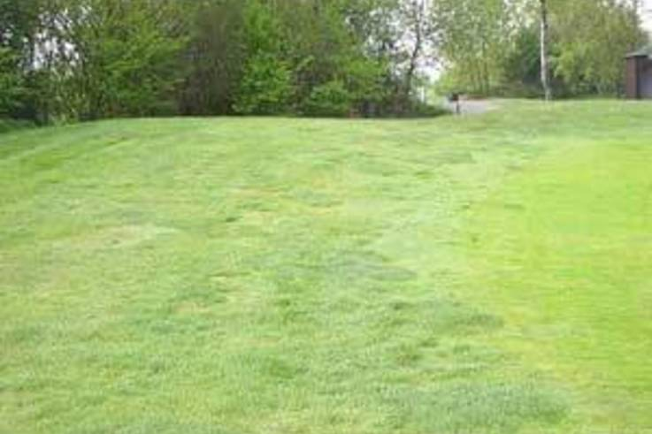 Are your green surrounds a neglected area of your course?