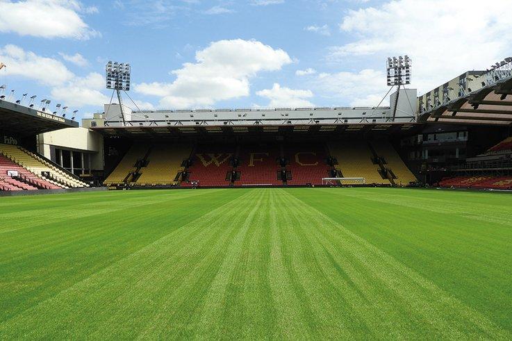 Watford-FC_pitch.jpg