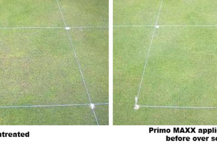 STRI oversowing trials