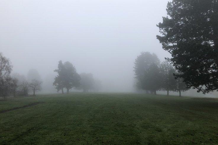Chipstead Golf Club_fog.jpg
