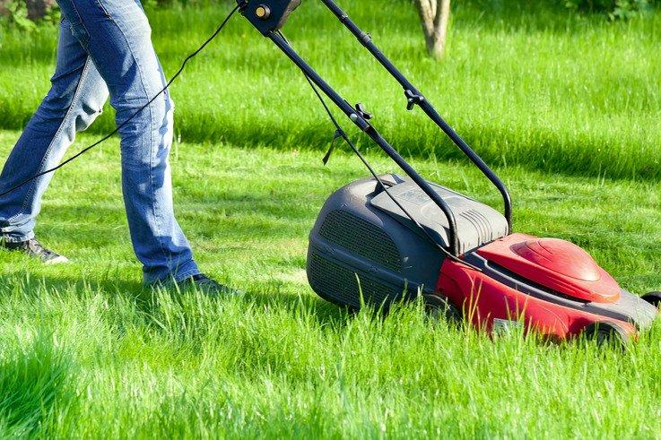 mowing a park 2