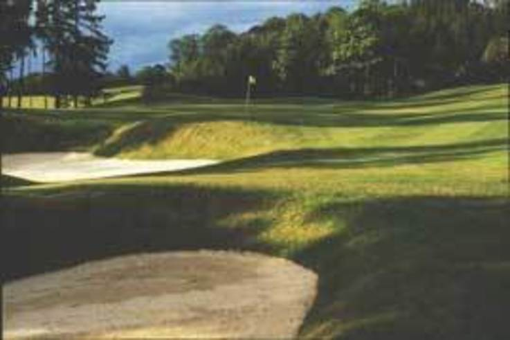 The Roxburghe counters time on sand based greens