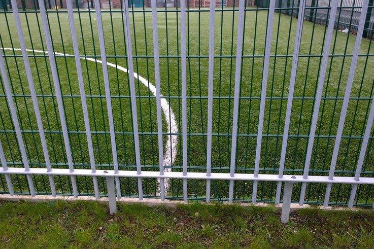 Zaun Guinea Gap fencing 2