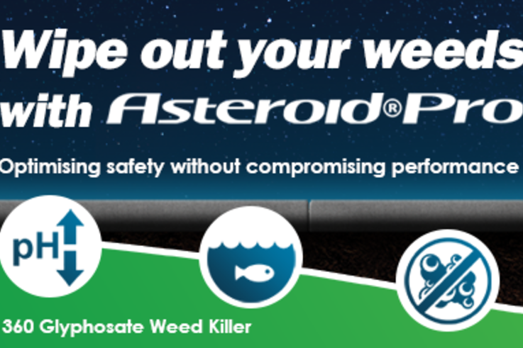 asteroid banner small