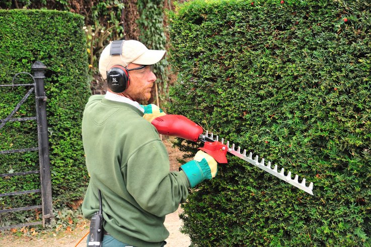 ELECTRIC HEDGE TRIMMER (1)