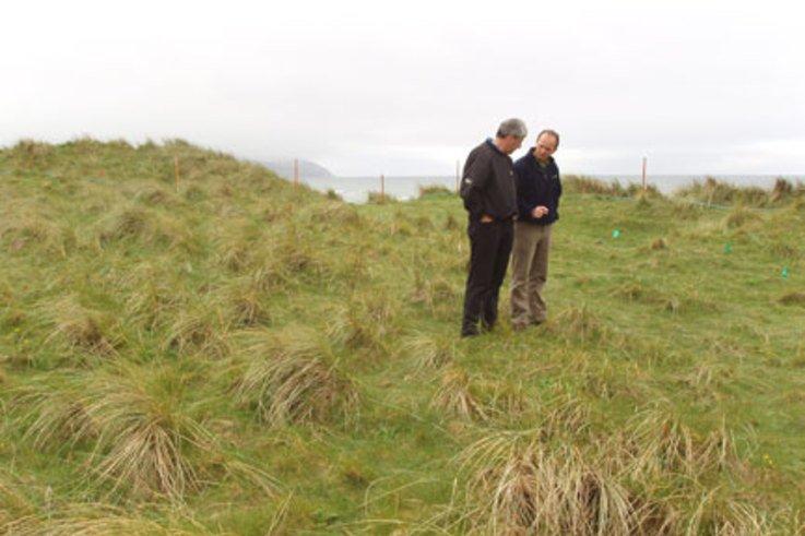 Barenbrug helps Machrihanish Dunes get back to grass roots