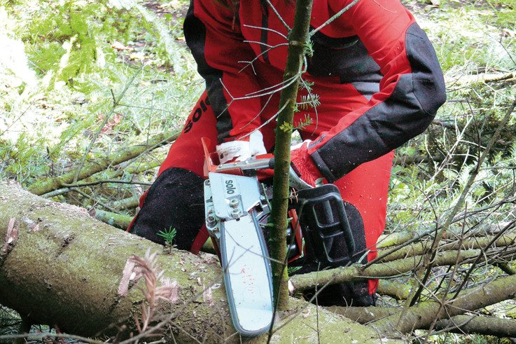651 chainsaw (action)1