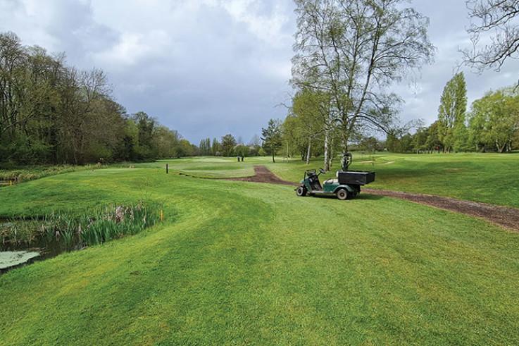 Shirley-Golf-Club_gator.jpg