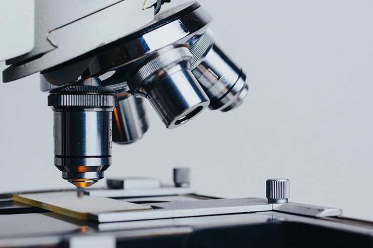 Abigail-Graceson_microscope.jpg