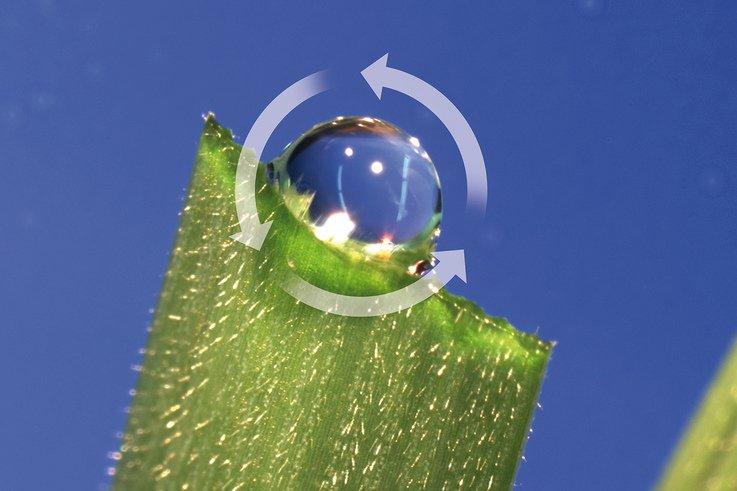 Heriatge Maxx - droplet recycling PR.jpg