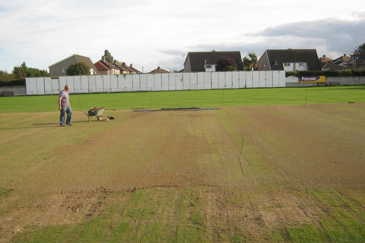 CricketRenovation-AutumnRenovation