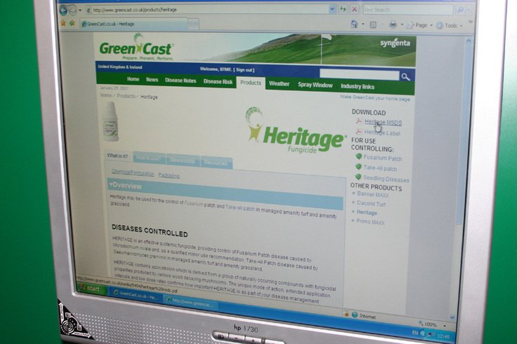 green cast screen