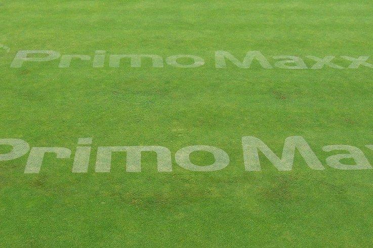 Primo line marking trial - STRI mr.jpg