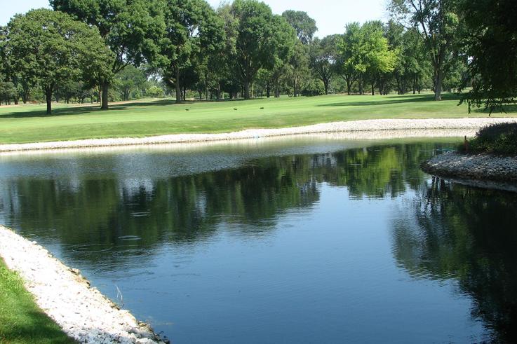 Black Onyx in pond at Aurora GC, Ohio, USA.JPG