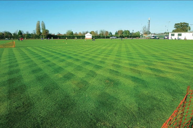 Lawn care - a career path for turf professionals?
