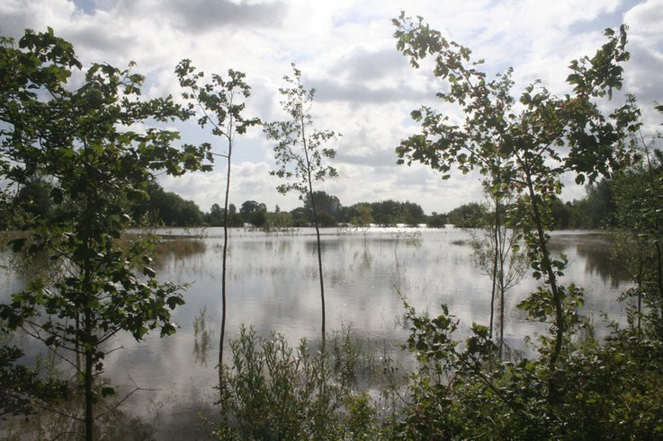 Soil conditions and flooding