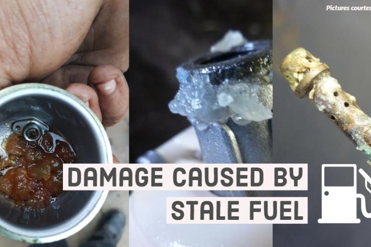 Damage caused by stale fuel.jpg