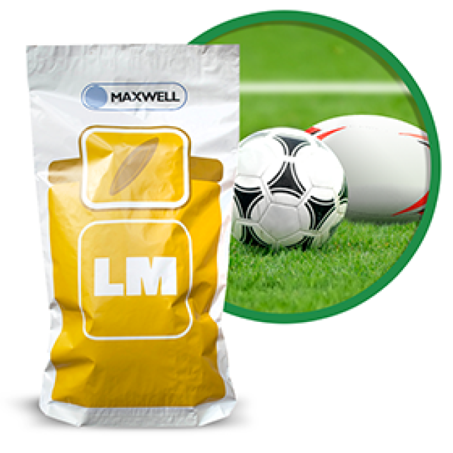 Football/Rugby Grass Seed