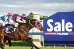 Sale Racecourse