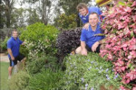 St Johns Park Bowling club greenkeepers Steve Lange, Steve Shannon and Peter thompson are four-time garden competition winners.