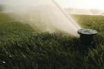 Irrigation Main