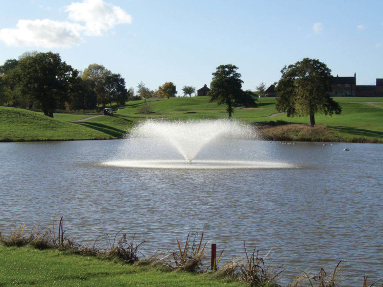 Keeping Ponds And Lakes Healthy Pitchcare