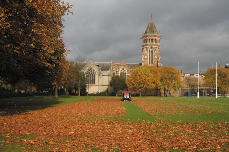 Swept Away Like Autumn Leaves By Gale >> When Autumn Leaves Start To Fall Pitchcare Articles